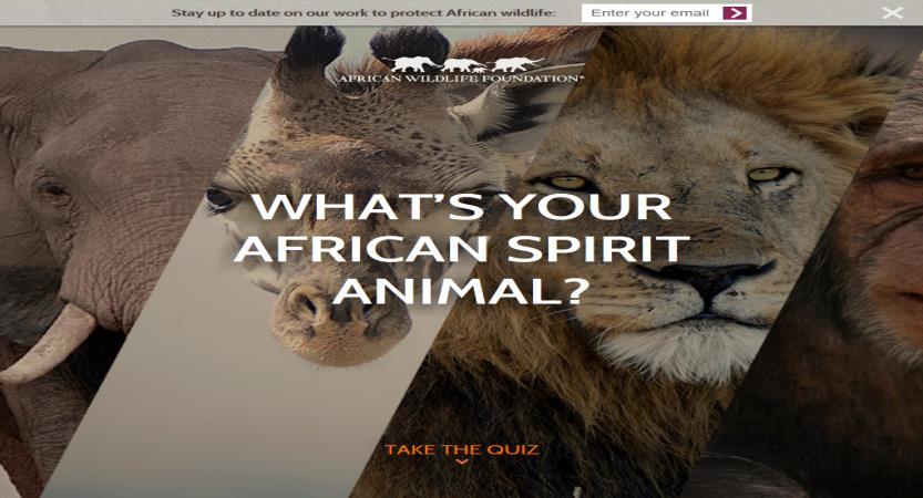 image of Sanky Communications, Inc. Wins 2016 Best Non-Profit Mobile Website Mobile WebAward for African Wildlife Foundation: What's your African spirit animal?