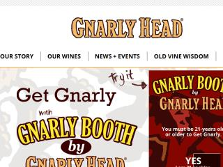image of Asterix Group Wins 2015 Best Beverage Mobile Application Mobile WebAward for Gnarly Booth